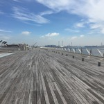 横浜港大さん橋で豪華客船の見学。くじらの背中が気持ち良い。