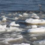 流氷を見るなら紋別か網走、どっち?